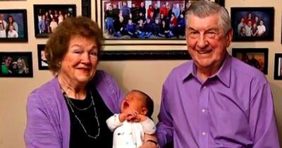 Nummer 100: Ein Stall voller Enkel