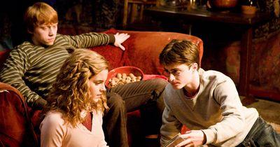 Geheimnis gelüftet: Warum die Dursleys Harry Potter so hassen
