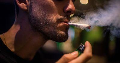 Sensationsmeldung: Cannabis soll Knochenbrüche schneller heilen!