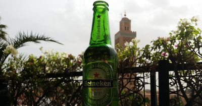 Dein Bier riecht nach einem Stinktier oder Gras? Wir erklären dir warum!