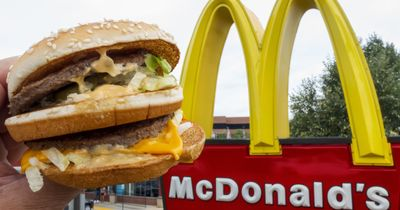 Nach einem Big Mac: Das passiert im Körper