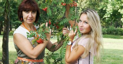 Wie unsere Ernährung unsere Gene beeinflusst