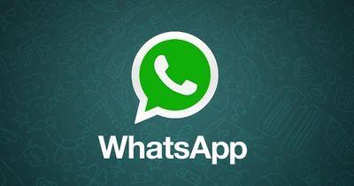 WhatsApp zeigt dir deinen besten Freund!
