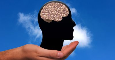 5 Mythen, die du immer geglaubt hast...