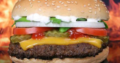 Monster Burger bricht alle bisherigen Rekorde eines Burgers!!