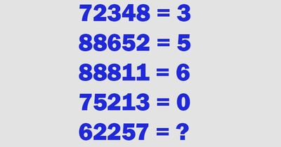 Dieses Rätsel ist einfach nur verrückt!