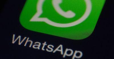 Hammer News für WhatsApp-User