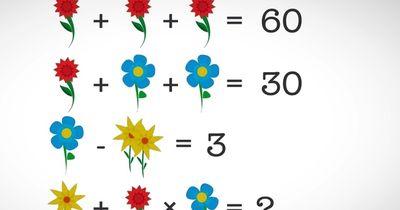 Rätsel: Dieses einfache Zahlenrätsel macht das gesamte Netz verrückt!