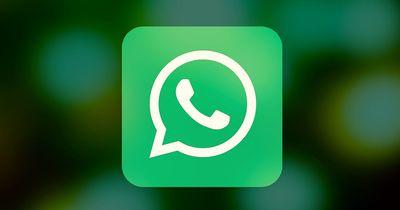 WhatsApp-Enthüllung : Diese Funktion wird es bald geben