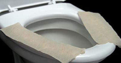 Deshalb solltest du nie Klopapier auf die Toilette legen