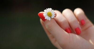 Deine Finger verraten dir, ob du attraktiv bist
