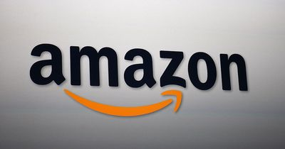 5 Fakten, die bisher keiner über Amazon wusste