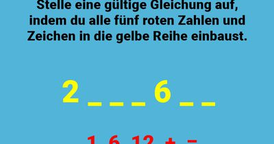 Die clevere Gleichung