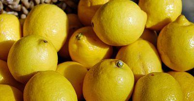 Deshalb sollten wir Zitronen ins Schlafzimmer legen