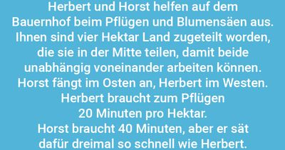Herbert, Horst und die 4 Hektar