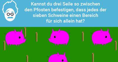 Schweinesperre